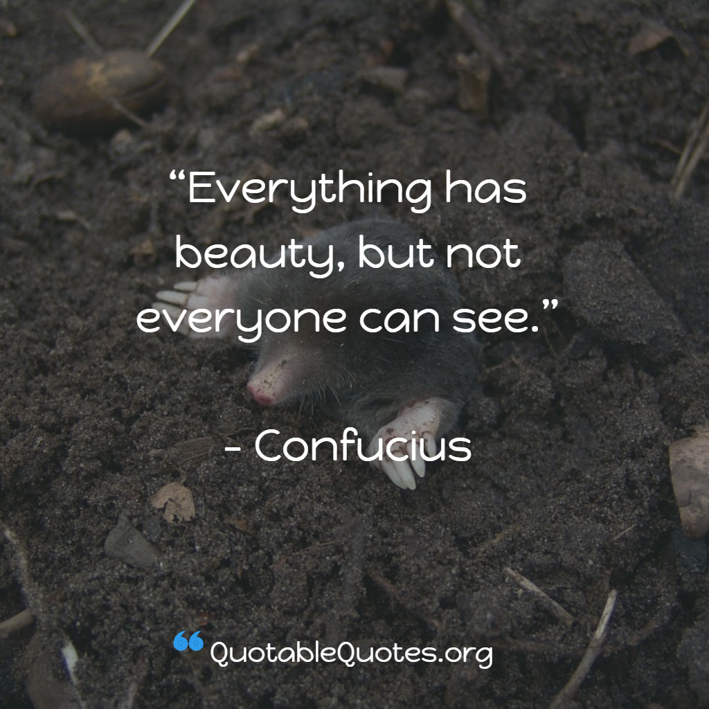 Confucious says Everything has beauty, but not everyone can see.