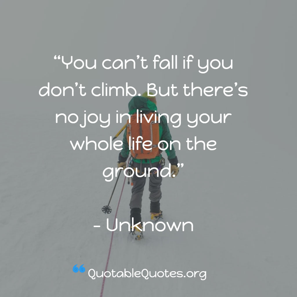 Unknown says You can't fall if you don't climb. But there's no joy in living your whole life on the ground.